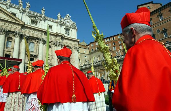Religious Mass「Pope Conducts Palm Sunday Celebrations」:写真・画像(1)[壁紙.com]