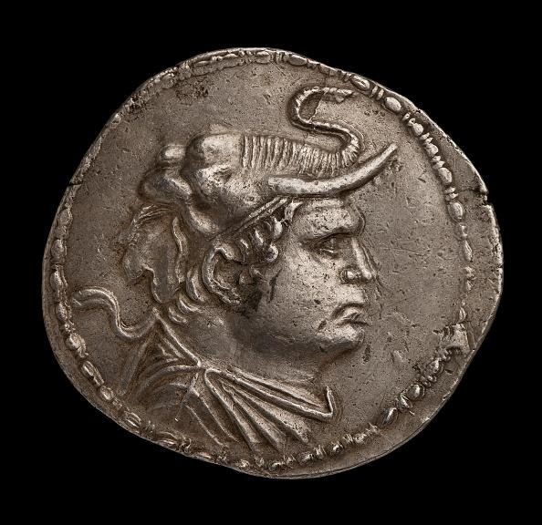 Horned「Indo-Greek Coin」:写真・画像(4)[壁紙.com]
