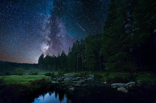 National Park「Bellever at Night」:スマホ壁紙(19)