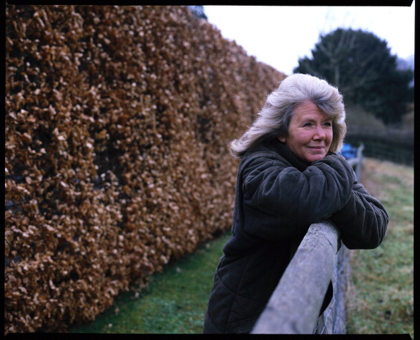 Pasture「Author Jilly Cooper At Her Country Home」:写真・画像(5)[壁紙.com]