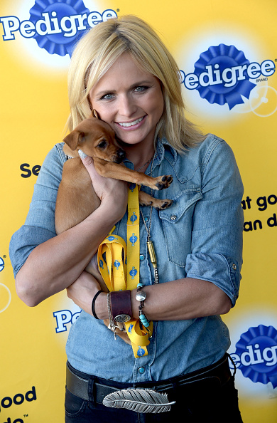 犬「Miranda Lambert And Pedigree Brand Put Shelter Dogs Center Stage At The Pedigree Adoption Suite」:写真・画像(6)[壁紙.com]