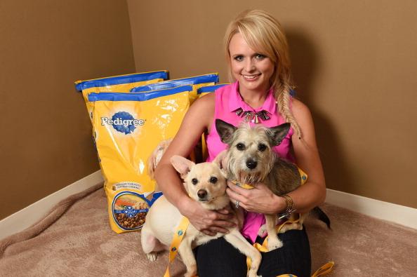 Animal「Miranda Lambert And Pedigree Brand Unite To Help Shelter Dogs」:写真・画像(1)[壁紙.com]