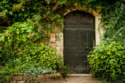 Brick Wall「Secret Garden Door」:スマホ壁紙(3)