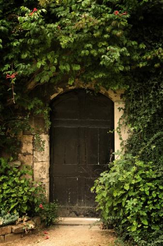 Paving Stone「Secret Garden Door」:スマホ壁紙(13)