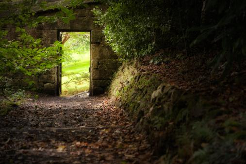 Ornamental Garden「Secret Garden Gate」:スマホ壁紙(8)