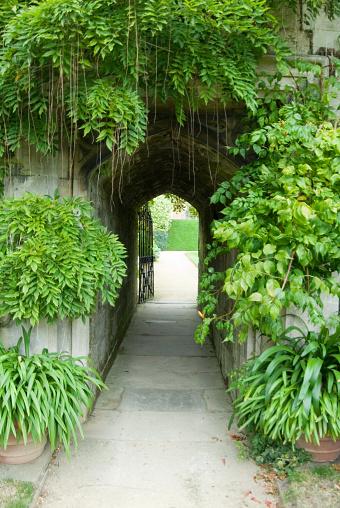 Mystery「Secret Garden entrance」:スマホ壁紙(14)