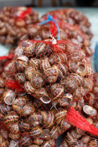 カタツムリ「エスカルゴ-巻き貝、料理にフランスの市場で販売される」:スマホ壁紙(17)