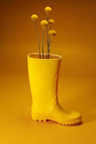 Rubber Boot「Yellow Flower Growing in Boot, Side View」:スマホ壁紙(13)