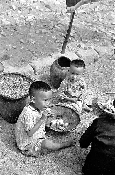 Raw Food「Refugee's Meal」:写真・画像(1)[壁紙.com]
