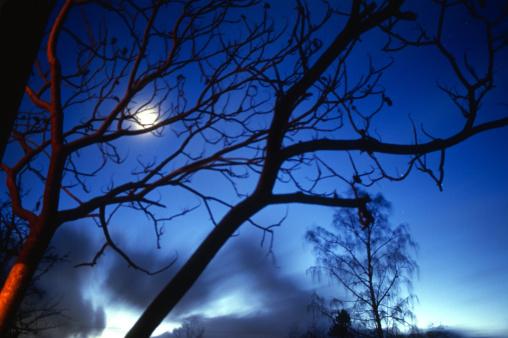 月「Moon shines while clouds streak by」:スマホ壁紙(14)