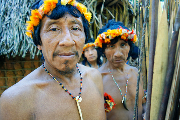 Tropical Rainforest「Awa Men & Woman」:写真・画像(11)[壁紙.com]