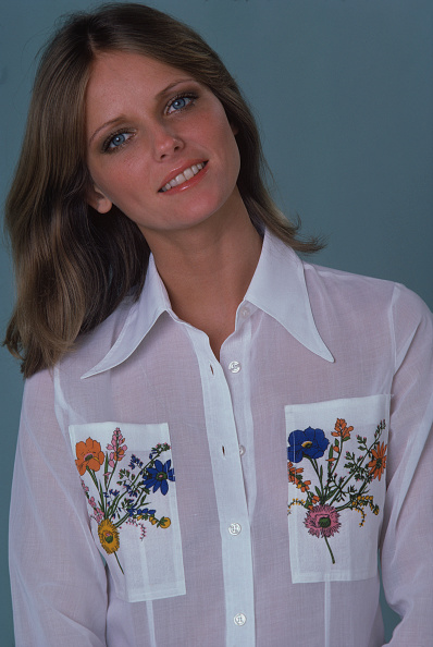 Gray Background「Portrait Of Cheryl Tiegs」:写真・画像(15)[壁紙.com]