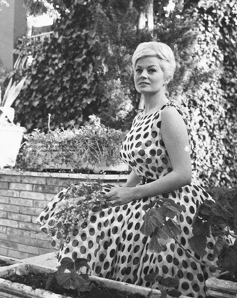 ドレス「Anita Ekberg」:写真・画像(1)[壁紙.com]