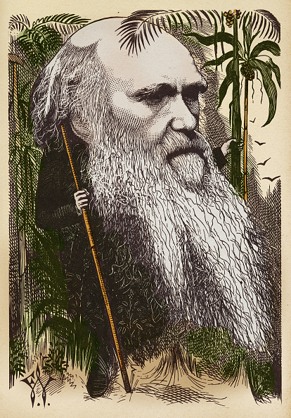Art Product「CHARLES DARWIN SEEN BY WADDY」:写真・画像(11)[壁紙.com]