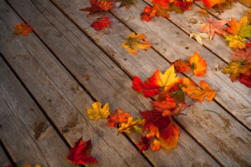 Maple Leaf「Autumn leaves」:スマホ壁紙(11)