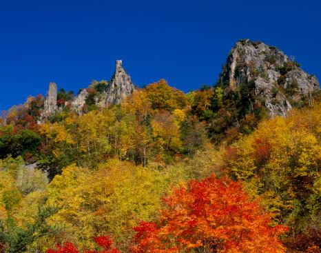 Kamikawa District - Ishikari「Autumn Leaves at Sounkyo Gorge, Kamikawa, Hokkaido, Japan」:スマホ壁紙(18)