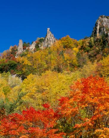 Kamikawa District - Ishikari「Autumn Leaves at Sounkyo Gorge, Kamikawa, Hokkaido, Japan」:スマホ壁紙(17)