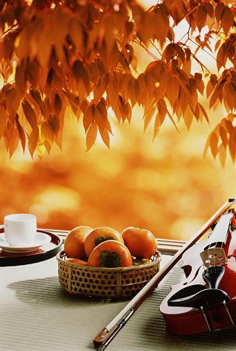 柿「Autumn leaves hanging over a basket of persimmons and a violin and bow」:スマホ壁紙(1)