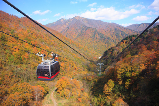 Aerial tramway「Autumn leaves Seen from Tanigawa-dake cable car」:スマホ壁紙(14)