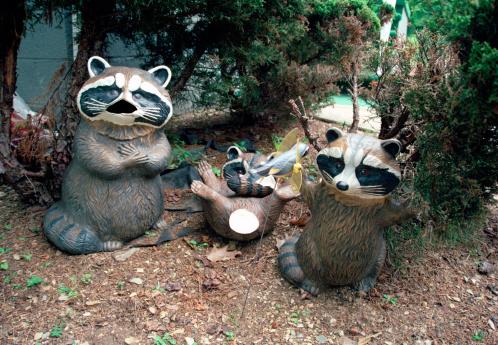 Harz Mountain「Ceramic Raccoons in Garden」:スマホ壁紙(9)
