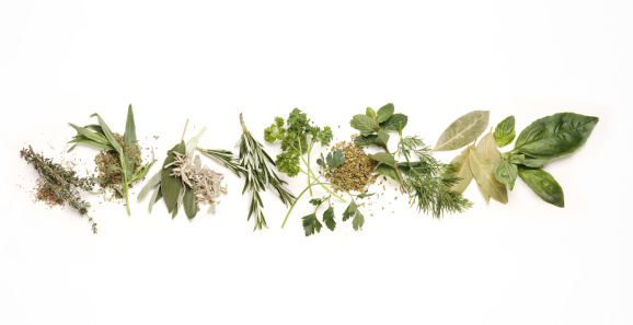 Mint Leaf - Culinary「Various herbs」:スマホ壁紙(19)