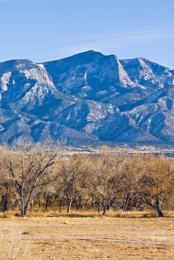 Sandia Mountains「Southwestern Landscape with Sandia Mountains」:スマホ壁紙(5)