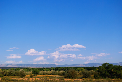 Sandia Mountains「Southwestern Landscape with Sandia Mountains」:スマホ壁紙(11)