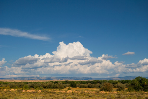 Sandia Mountains「Southwestern Landscape with Sandia Mountains」:スマホ壁紙(8)