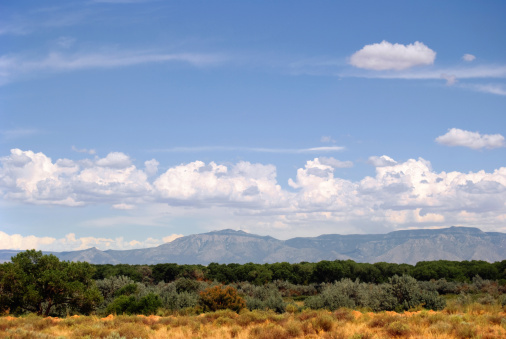 Sandia Mountains「Southwestern Landscape with Sandia Mountains」:スマホ壁紙(6)