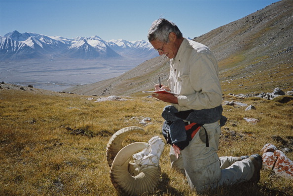 Horned「Conservationist In Wakhan」:写真・画像(7)[壁紙.com]