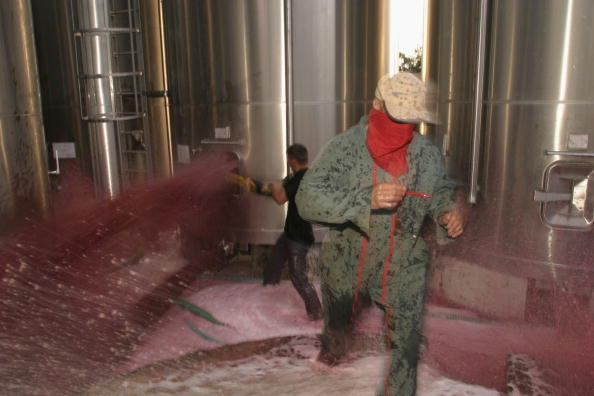 Languedoc-Rousillon「Vineyard Owners Gather To Protest Against Falling Prices」:写真・画像(12)[壁紙.com]