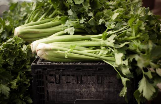 Celery「Organic celery at a farmers' market」:スマホ壁紙(8)