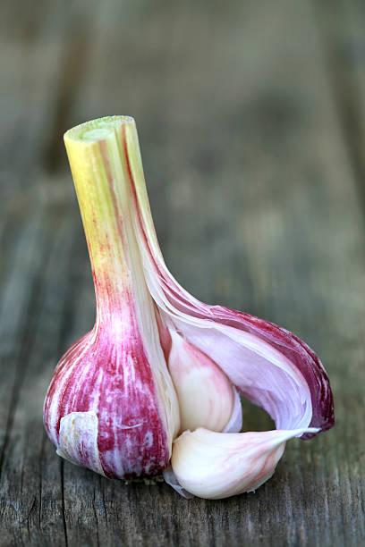 Red garlic:スマホ壁紙(壁紙.com)