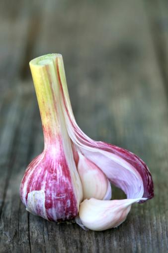 Garlic Clove「Red garlic」:スマホ壁紙(2)