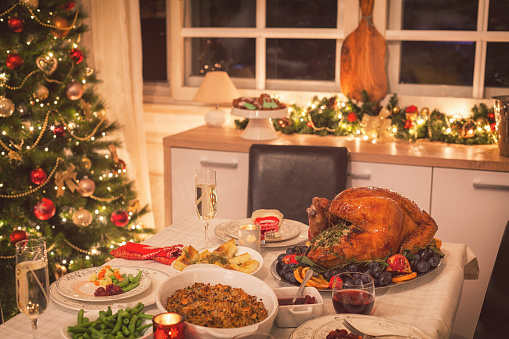 Chicken Meat「Traditional Stuffed Christmas Turkey with Side Dishes」:スマホ壁紙(18)