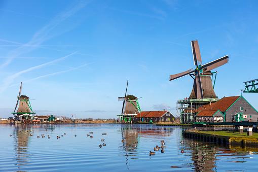 Amsterdam「Traditional Dutch windmills at Zaanse Schans, Amsterdam, Netherland」:スマホ壁紙(0)