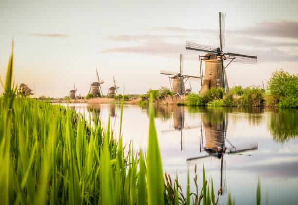 Traditional Dutch windmills at Kinderdijk:スマホ壁紙(壁紙.com)