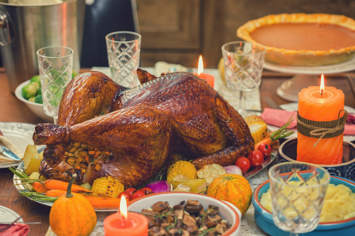 Turkey - Bird「Traditional Stuffed Turkey with Side Dishes for Thanksgiving Day」:スマホ壁紙(1)