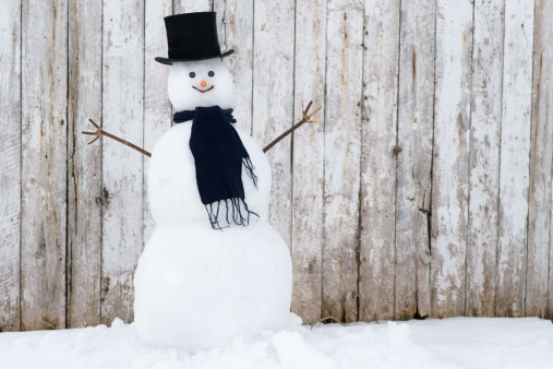 Snowman「Traditional Snowman.」:スマホ壁紙(14)