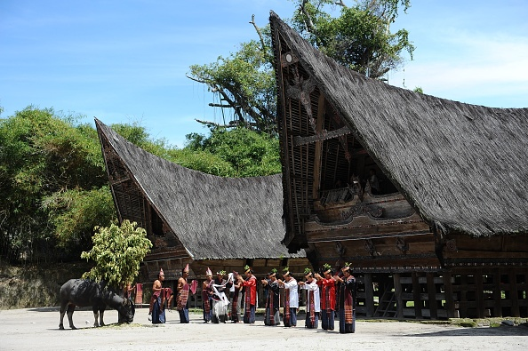 Tourism「Indonesia's Oldest Traditional Batak Dance Group Perform On Samosir Island」:写真・画像(8)[壁紙.com]