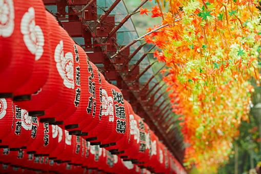 Chinese Lantern「Traditional chinese laterns in Singapore」:スマホ壁紙(17)