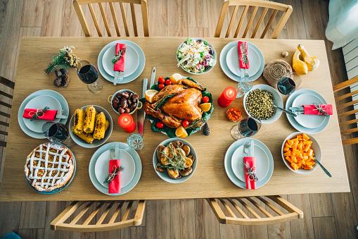 Turkey - Bird「Traditional Holiday Stuffed Turkey Dinner」:スマホ壁紙(5)