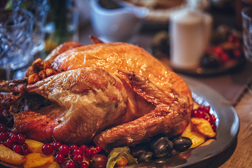 Thanksgiving「伝統的な祝日スタッフドターキーディナー」:スマホ壁紙(14)