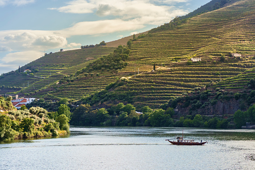 Steep「Traditional Rabelo boat on the Douro River, Portugal」:スマホ壁紙(18)