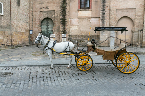 Horse-drawn carriage「Traditional carriage in Seville」:スマホ壁紙(14)