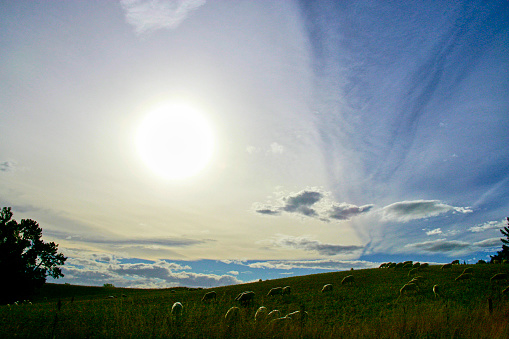Moody Sky「Cloud typologies in dramatic skies」:スマホ壁紙(12)