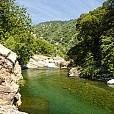 セコイア国有林壁紙の画像(壁紙.com)