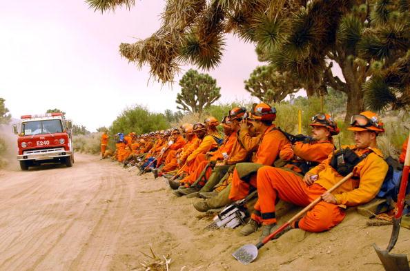 Wilderness Area「Escalating California Wildfire Threatens San Bernardino Forest」:写真・画像(11)[壁紙.com]