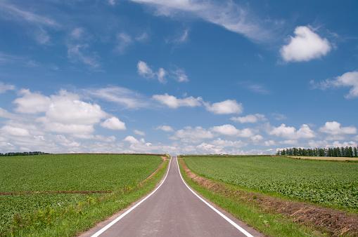 Biei Town「Road, Hokkaido Prefecture, Japan」:スマホ壁紙(9)