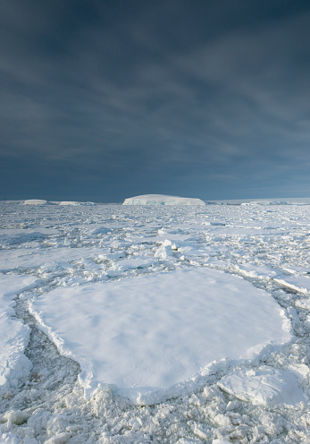 Pack Ice「Entrance of the Lemaire Channel along the Antarctic Peninsula.」:スマホ壁紙(19)